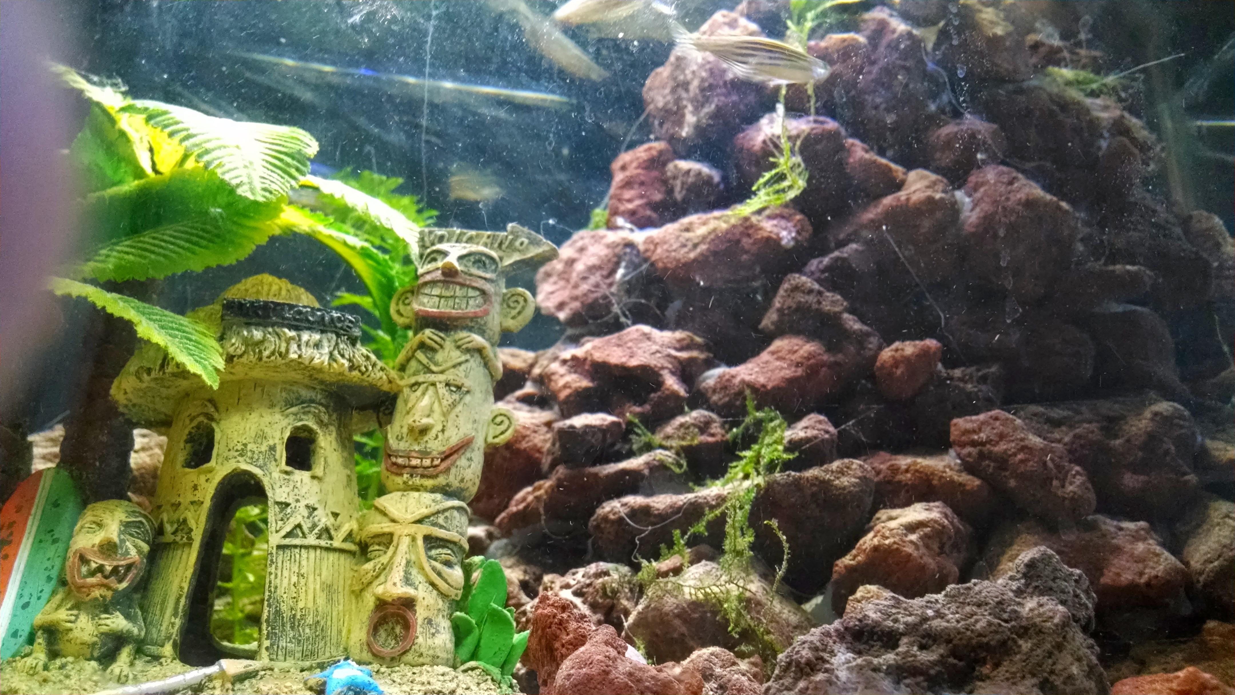 Fish tank volcano - Tiki Hut Volcano 10 Gallon